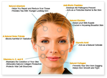 Effective Anti-Aging Treatments